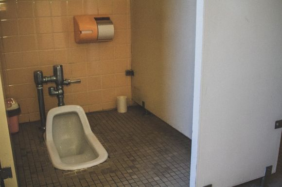 Squat Toilets Popularity Fading As Parents Call For Them