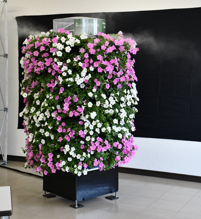 Solar-powered flower bed automatically waters plants